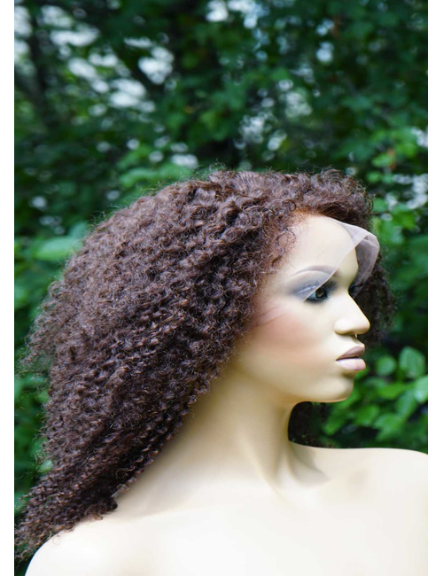 Curly human hair wigs for African Americans